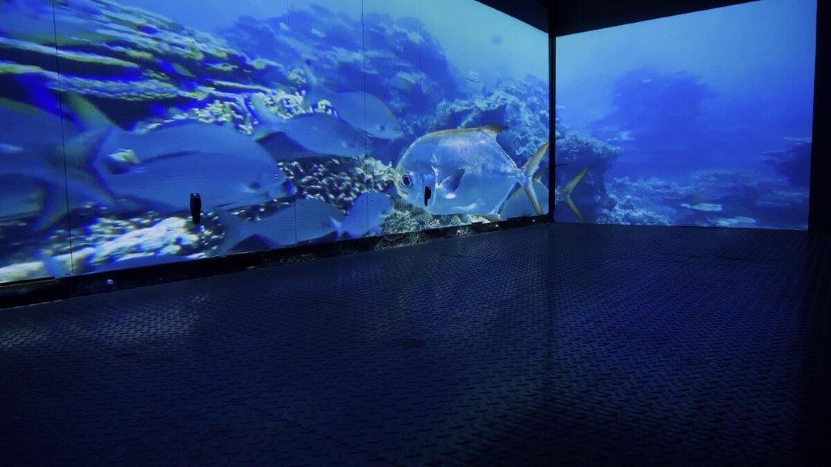 ascensore per auto con immersive room